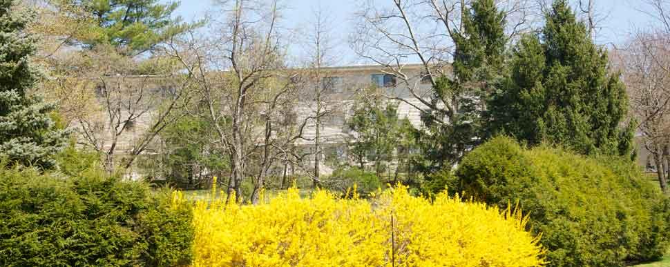 Springvale apartment in the spring